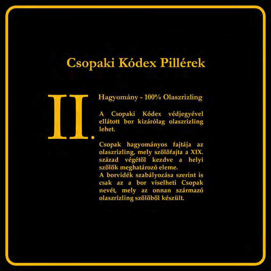 Csopaki_Kodex_pillerek-2_Page_07