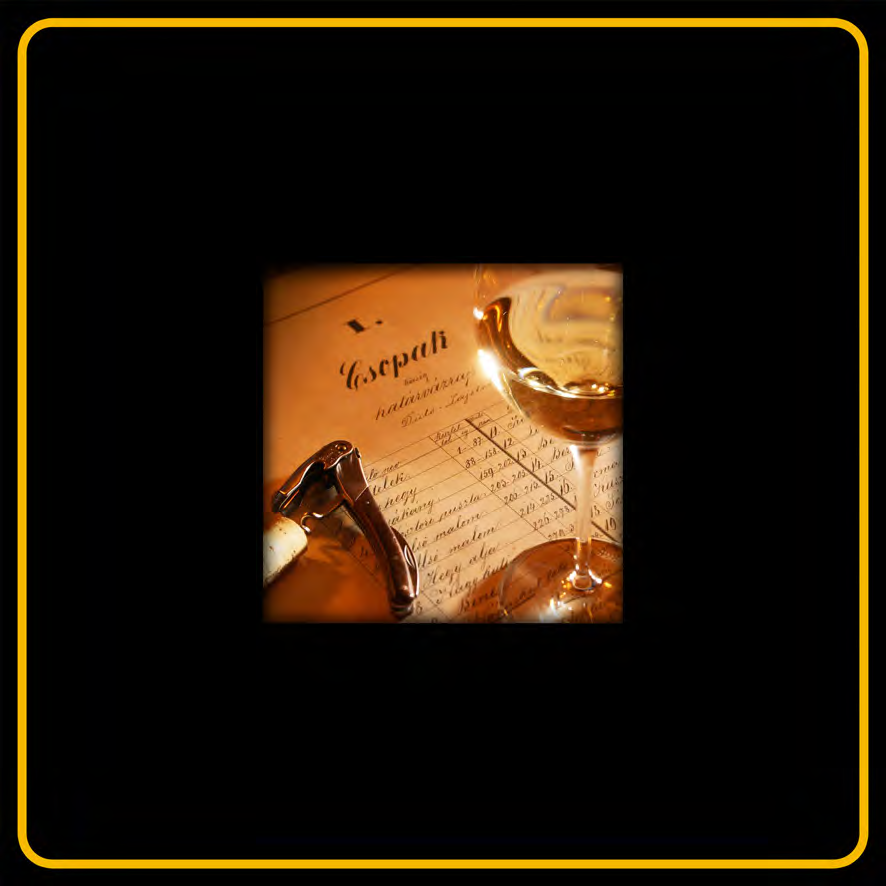 Csopaki_Kodex_pillerek-2_Page_08
